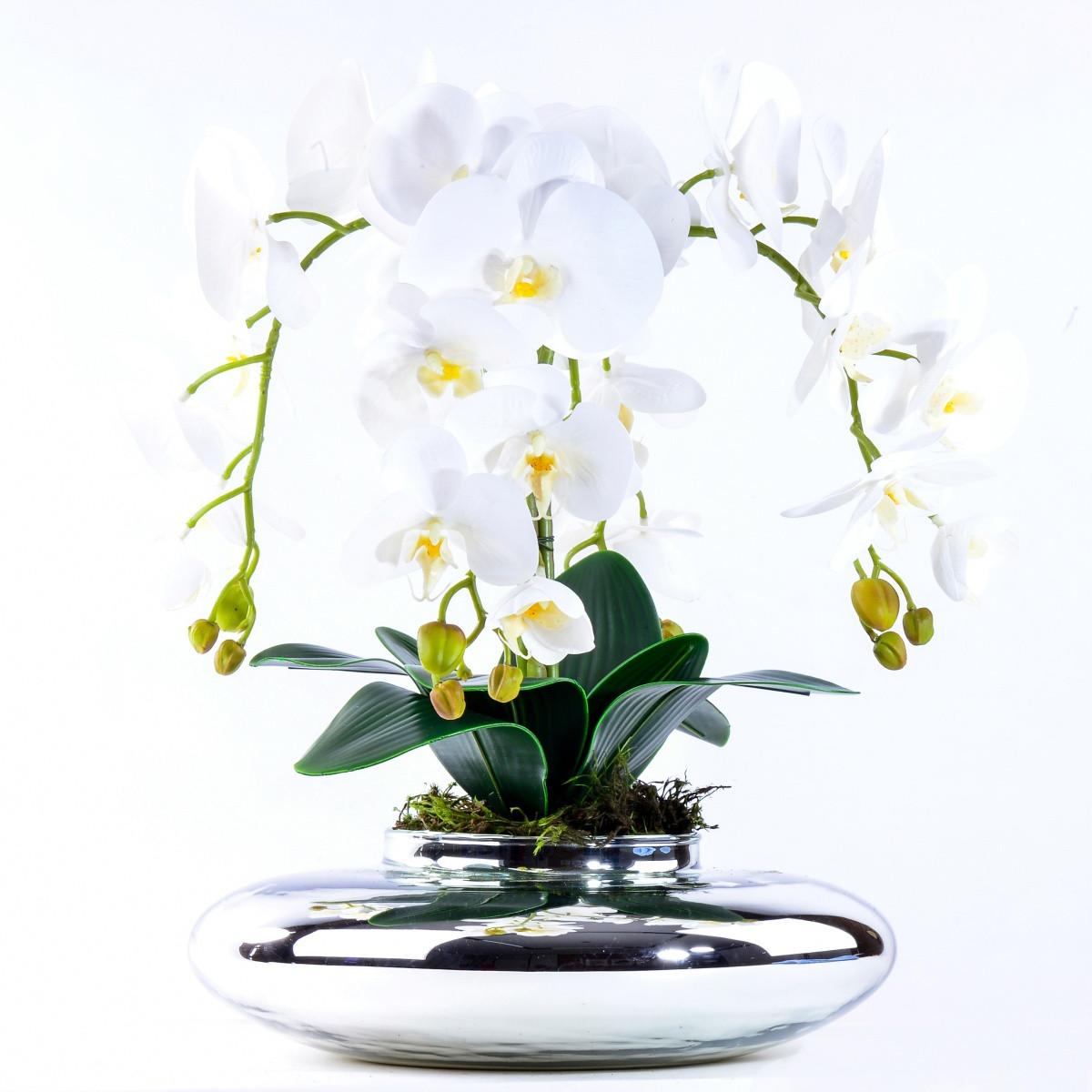 Arranjo com 4 Orquídeas Brancas Toque Real em Terrário Prata
