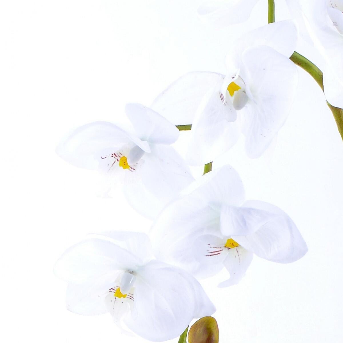 Arranjo de Orquidea Artificial Branca Gala